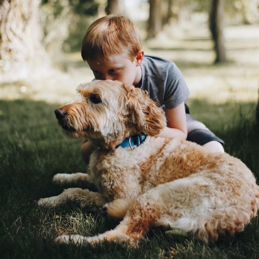 Niños con bienestar animal